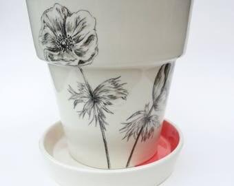 Anemone coral plant pot