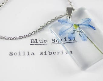 Blue Squill (Scilla siberica) Botanical Jewelry, Wildflower Necklace, Herbarium Pendant, Real Flower Resin, Pressed Plant Resin, Herbalism