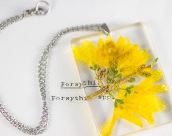 Forsythia (Forsythia spp) Botanical Jewelry, Wildflower Necklace, Real Flower Necklace, Gifts for Gardeners, Herbarium Pendant, Boho Jewelry