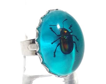 real beetle silver ring