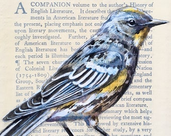 Warbler Painting on Antique Book Paper