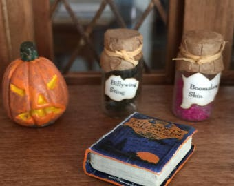 Halloween Jack o Lantern Along With a Book on Halloween and Two Potion Bottles for Your One Inch Scale Dollhouse