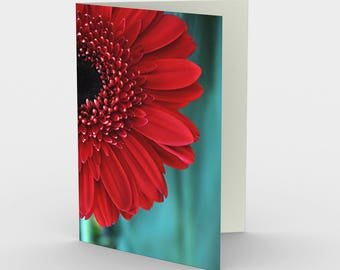 Red Flower Card, Blank Note cards, Nature Note Cards, Greeting Cards, Three Note Cards, 5x7 Cards, Nature Blank Card, All Occasion Cards