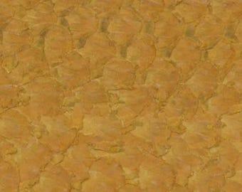 authentic Carp exotic fish skin leather Vintage Basketweave Tan semi-glazed hide DE-59605 (Sec. 1,Shelf 10,D)