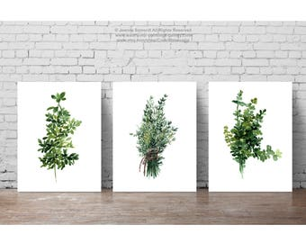 Kitchen Print Green Dining Room Wall Decoration, Herbs Thyme set of 3 Prints, Botanical Watercolor Painting, Herbs Spices Kitchen Poster