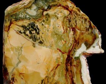 Beautiful Polished Morrisonite Jasper Slab- A75