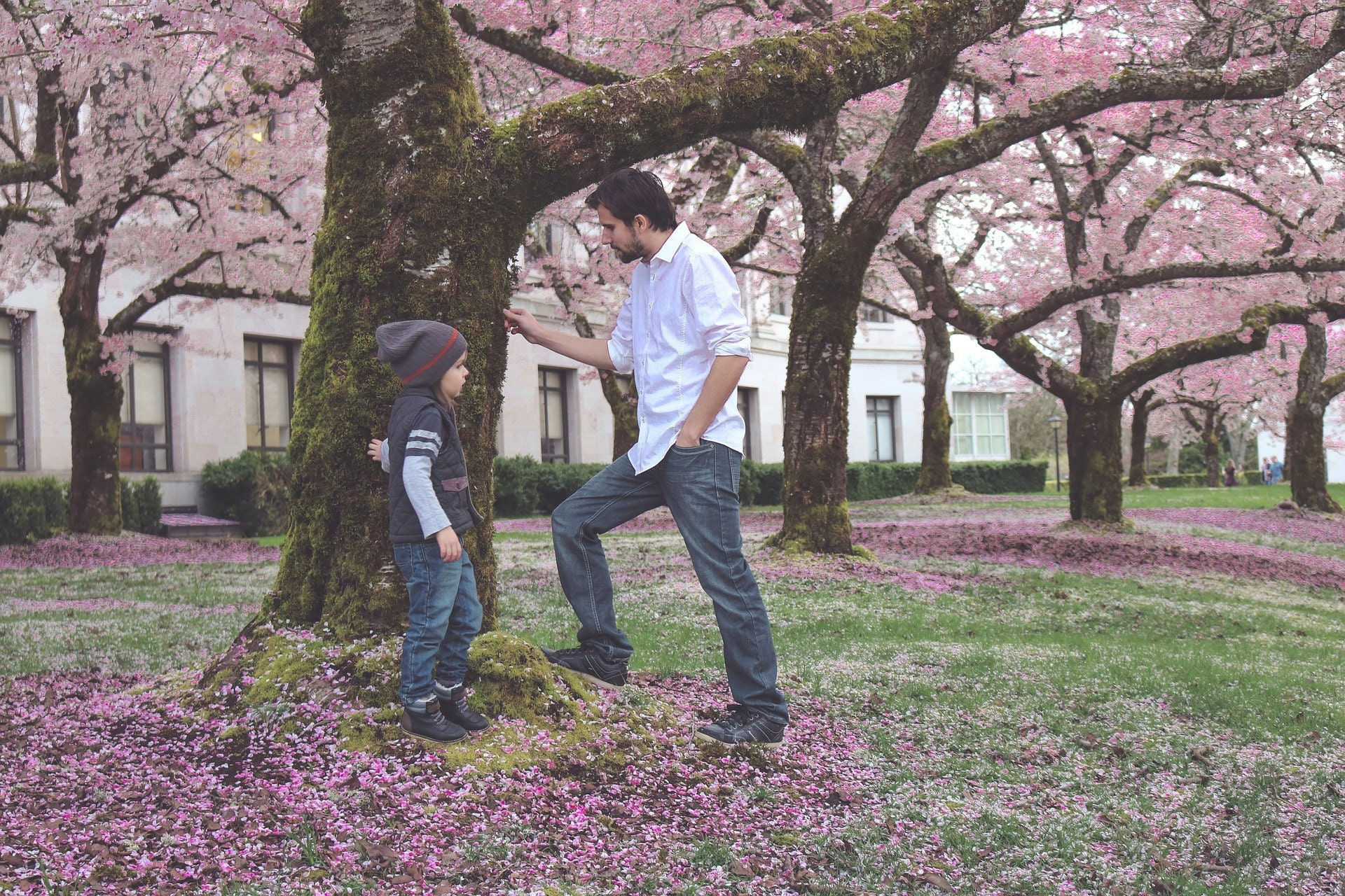 Dad, child, leaves, spring, grass, learning, experience, sensory, colors