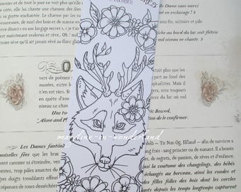 brand coloring Fox coloring page