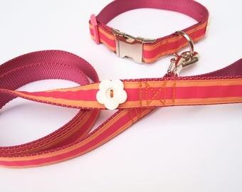Dog Collar & Leash Sets