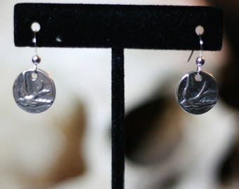 Coin swallows