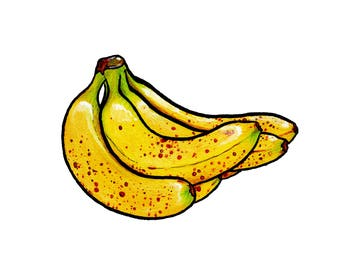"Art Print ""Banana"", Fruit, Illustration, Sketch, Drawing,"