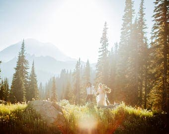 Digital Background Backdrop- Photography - Wild Flowers Sunflare Mountains - Newborn, kids, maternity - Instant Download, blurred background