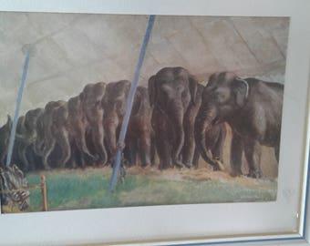 Vintage 1932 Print of Elephants/ Ringling  Brothers Barnum Bailey  Circus