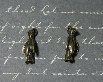 2 charms AUK / Penguin from Antarctica bronze 7x24mm