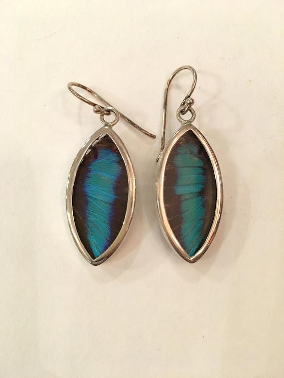 ULYSSES Butterfly Wing Earrings// Butterfly Wing Jewelry// AUTHENTIC Butterfly Wings// Eco Friendly Jewelry// Statement Jewelry