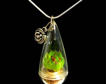 SALE Succulent Necklace / Mini Lotus Succulent Terrarium Necklace / Miniature Terrarium / Tiny Wearable Terrarium Accessories