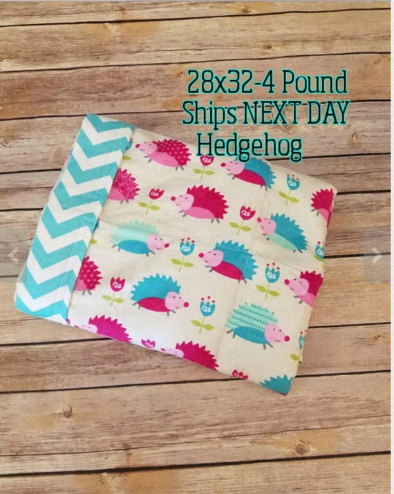Hedgehog, 4 Pound, WEIGHTED BLANKET, Ready To Ship, 4 pounds, 28x32, for Autism, Sensory, ADHD, Calming, Anxiety,