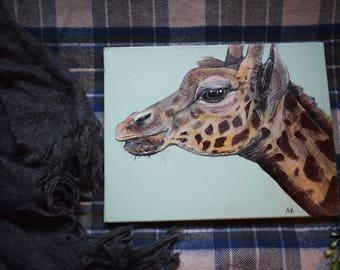 Eleanor Giraffe