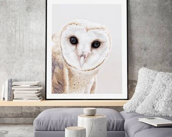 The Owl Scandi Style Art Print