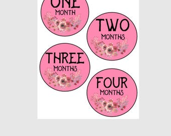 Baby girl month stickers| Milestone stickers| Newborn weekly stickers| Monthly stickers| Pink floral| Shabby Chic| Girly| Baby's first year