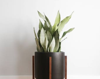 "Large - Mid-century Modern Ceramic Planter with Walnut or Oak Wood Planter Stand - 12"" Cylinder Pot"