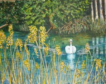 Painting Swan original waterscape