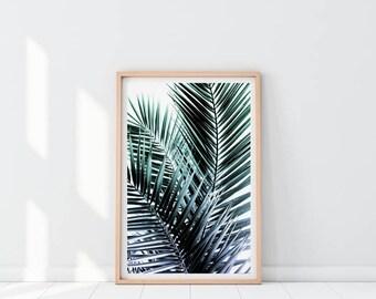Palm Leaf Print, Minimalist Tropical Print, Palm Print, Tropical Leaf Print, Botanical Print, Palm Leaves, Tropical Decor, Palm Leaf Poster
