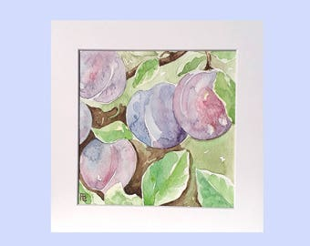 Original watercolour of plums, painting of plums, affordable fruit painting, original watercolor artwork, kitchen art, purple painting