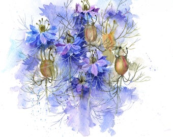Nigella step by step watercolour painting project