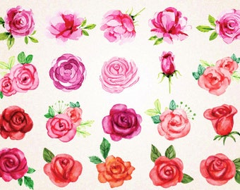 Watercolor Roses Clipart/Watercolor Roses SVG,PNG 300 ppi/Red Roses/Pink Roses/Love Clipart/Decorative Elegant Roses/Valentine Roses