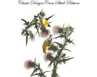 Audubon's Plate 33 American Goldfinch Cross Stitch Pattern