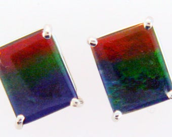 Pair of  Emerald Cut Canadian Ammolite set in 14k White  Gold