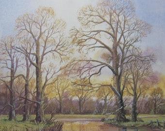 Derbyshire landscape - along the River Trent