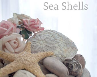 Lace Covered Sea Shell - Beach Decor Handmade Antique Lace - Coastal Beach Combing Driftwood