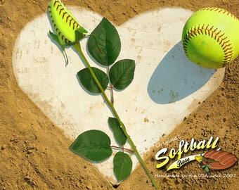 Original Softball Rose