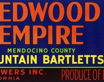 Original vintage pear crate label 1950s Redwood Empire Ukiah Mendocino County California Sequoia Tree