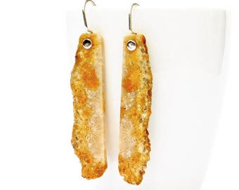 """Indonesian Fossil Coral Earrings, """"Golden Sea"""" Indonesian Fossil Coral Earrings in Sterling"""