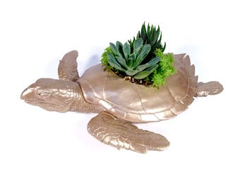 May Belle the Sea Turtle Toy Planter (plants not included)