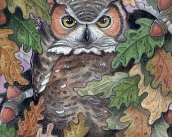Owl in Oak Tree....Giclee Fine Art Print