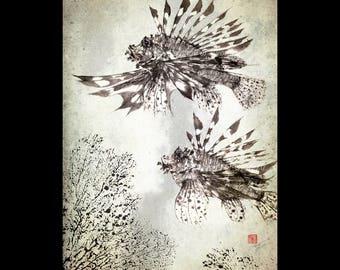 LIONFISH (Hanami No Kasago) Gyotaku print - traditional Japanese fish art