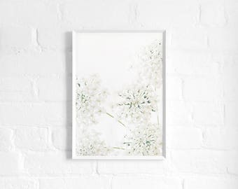 Queen Anne's Lace A3 Art Print, White Floral Poster, Large Flower Print, Wildflower, Botanical Art, Girls Room, Wall Decor, Modern Floral