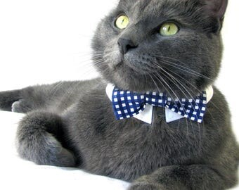 Dark Blue Gingham Bow Tie, Necktie, Bow on a Shirt Style Collar for both Dogs & Cats