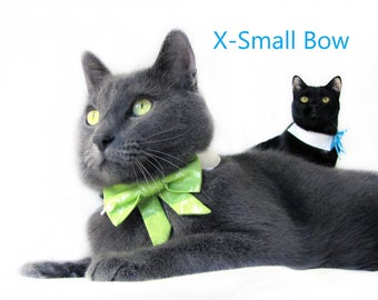 Lime Green Metallic Damask Bow Tie, Necktie, or Bow on a Shirt Style Collar for both Dogs & Cats