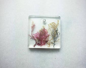 seaweed pendant necklace