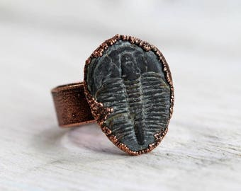 Trilobite Ring Size 8 3/4  Electroformed Ring Fossil Jewelry Men's Ring Unisex Jewelry Wide Band Ring Electroformed Copper Ring