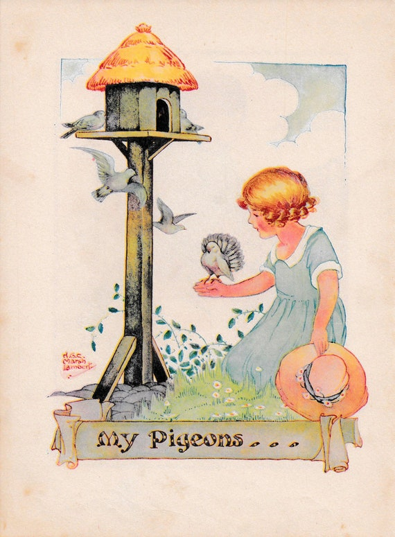 "Children's book illustration by H.G.C. Marsh Lambert, ""My Pigeons"", published 1950s, book print"