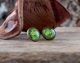 Green leaf earrings, Bright green earrings, Leaf stud earrings, Leaf jewelry, Green jewelry, Nature earrings, Botanical earrings NJ 023