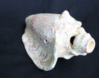 Pre-Columbian influence tritonal snail