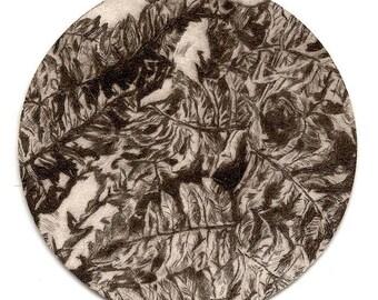 Original etching printed on cardstock of beer / original art engraving printed on coaster