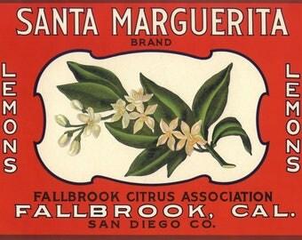 Original vintage Lemon Crate label 1930s Scarce Santa Marguerita Orange Blossom Fallbrook San Diego County California
